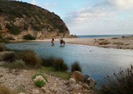 horse riding at the beach, Portugal