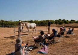 Horse assisted Seminar in Portugal